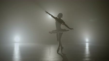 Graceful ballerina dressed in white performing a wonderful dance on a foggy stage
