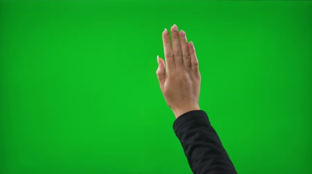 nonverbal : Close up of business woman hands in front of green screen simulating gestures in a virtual business environment