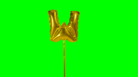 letter w : Letter W from alphabet helium gold balloon floating on green screen