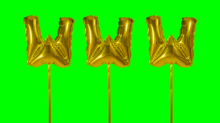 url : Word www web internet from helium golden balloon letters floating on green screen Stock Footage