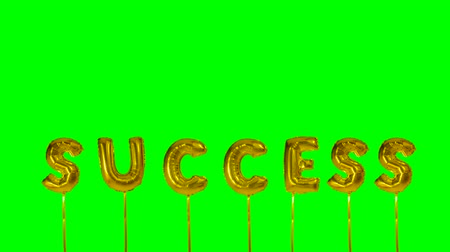 suceder : Word success from helium golden balloon letters floating on green screen