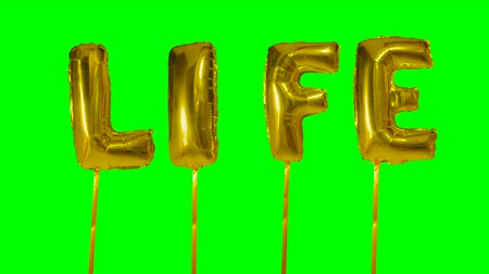 cytat : Word life from helium golden balloon letters floating on green screen