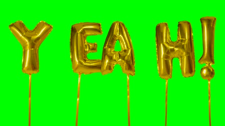 evet : Word yeah from helium golden balloon letters floating on green screen