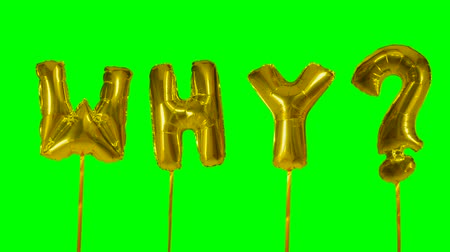 wandering : Word why from helium golden balloon letters floating on green screen