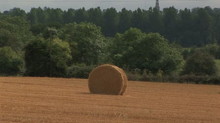 vidéki színhely : Single golden rolled haystack in luscious field Normandy, France