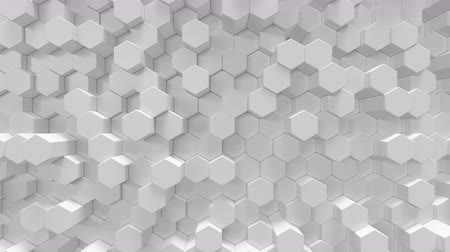 surroundings : White geometric hexagonal abstract background, 3d rendering 4k animation