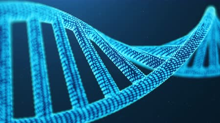 gen : Rotated 3D rendered Artifical Intelegence DNA Molecule. DNA is converted into a binary code. Concept binary code genome. Abstract technology science, concept artifical Dna Dostupné videozáznamy
