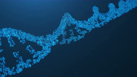 mikroszkopikus : Rotated 3D rendered Artifical Intelegence DNA Molecule. DNA is converted into a binary code. Concept binary code genome. Abstract technology science, concept artifical Dna Stock mozgókép