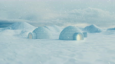 metrópole : Igloo standing against the winter landscape and snowdrifts. Strong wind and snow storm. 3d animation