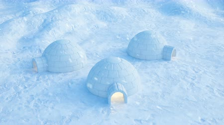 arktický : Igloo standing against the winter landscape and snowdrifts. Strong wind and snow storm, 3d animation