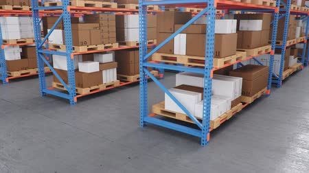 Warehouse with cardboard boxes inside on pallets racks, logistic center. Huge, large modern warehouse. Warehouse filled with cardboard boxes on shelves. Loop-able seamless 4K 3D animation Vídeos