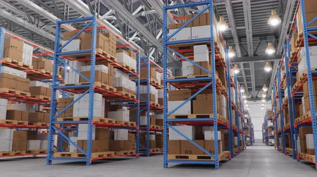 composição : Warehouse with cardboard boxes inside on pallets racks, logistic center. Huge, large modern warehouse. Warehouse filled with cardboard boxes on shelves. Loop-able seamless 4K 3D animation Stock Footage
