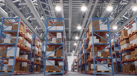 áruk : Warehouse with cardboard boxes inside on pallets racks, logistic center. Huge, large modern warehouse. Warehouse filled with cardboard boxes on shelves. Loop-able seamless 4K 3D animation Stock mozgókép