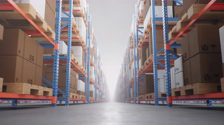 megtöltött : Warehouse with cardboard boxes inside on pallets racks, logistic center. Huge, large modern warehouse. Warehouse filled with cardboard boxes on shelves. Loop-able seamless 4K 3D animation Stock mozgókép