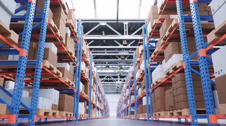 Warehouse with cardboard boxes inside on pallets racks, logistic center. Huge, large modern warehouse. Warehouse filled with cardboard boxes on shelves. Low angle view 3D animation