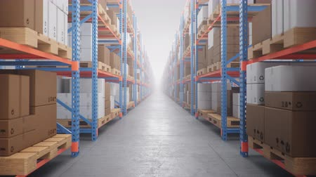 tektura : Warehouse with cardboard boxes inside on pallets racks, logistic center. Huge, large modern warehouse. Warehouse filled with cardboard boxes on shelves. Loop-able seamless 4K 3D animation Wideo