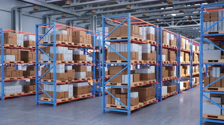 Warehouse with cardboard boxes inside on pallets racks, logistic center. Huge, large modern warehouse. Cardboard boxes on shelves. Horizontal camera movement along the warehouse, 3D animation Vídeos