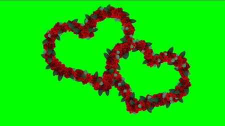 weddings : Hearts footage with chroma key. Footage for wedding video. Video background with animated hearts. Animated footage background for films or greeting cards. Video background for lovers or presentation. Stock Footage