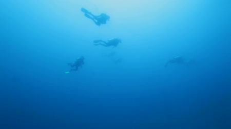 экстремальный : Group of Scuba Divers Swimming in Ocean Blue