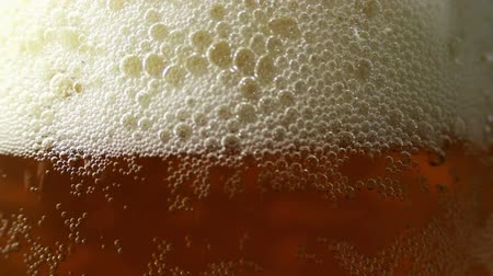 cervejaria : Beer is Poured in a Glass 1