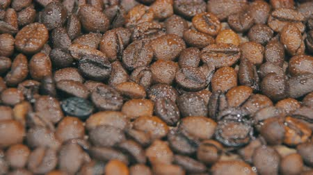 xícara de café : Coffee Beans Rotate Stock Footage