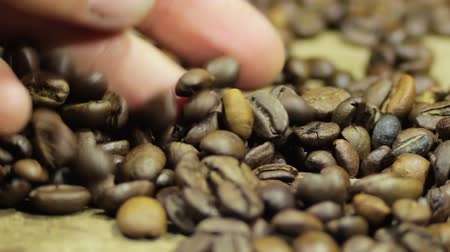 coffee brewing : Coffee Beans Rotate Stock Footage