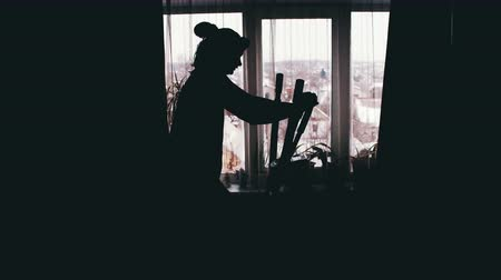 elliptical : Silhouette of the Girl Engaged on the Cardio Trainer Cross Trainer at Home on Against the Window.