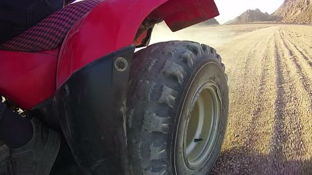 quadbike : Extreme Driving of the ATV in the Desert of Egypt, view of the Rear Wheel