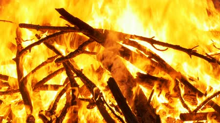 ruinous : Big Campfire from Branches Burn at Night in the Forest
