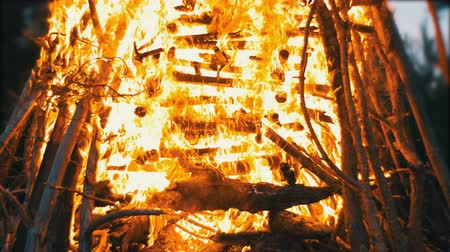 sacramental : Big Campfire from Branches Burn at Night in the Forest