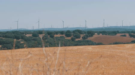 conservado : Wind Power in the Desert of Spain Stock Footage