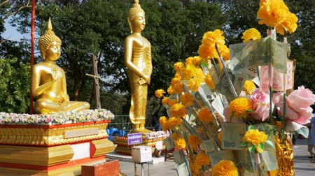 marigolds : Thai paper money on a branch of the Marigold on the background of big golden Buddha, Pattaya. Thailand.