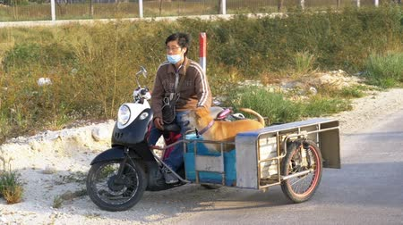 evacuation : Dogs are sitting in a trailer of a Thai motorcycle with a stroller. Asia. Slow Motion