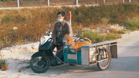 fiel : Dogs are sitting in a trailer of a Thai motorcycle with a stroller. Asia. Slow Motion