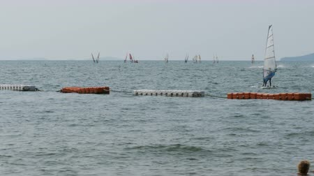 коршун : A group of surfers with sails rides the waves in the sea. Pattaya, Thailand