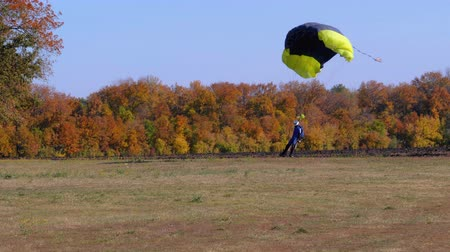 Skydiver flying with a parachute and landed on the ground Stock mozgókép