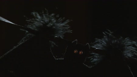 pyre : textile bat halloween garland decoration moving in the wind, dark background, close up shot