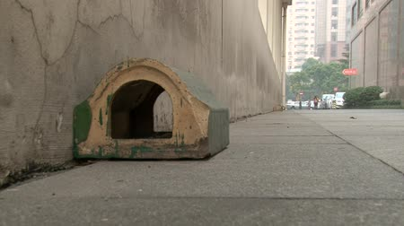 rodent control : Traps for rats on Shanghai roads, close up shoot Stock Footage