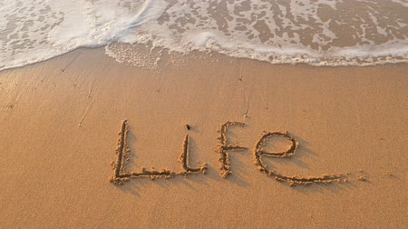 Life word on the sea sand. Conceptual nature scene. Stock Footage