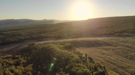 Nature video. Flight in green mountain meadow. Spring season time.