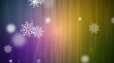 Winter Snow Loop on Multi-Color Background
