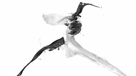 tintas : splashing black and white color in slow motion (FULL HD)