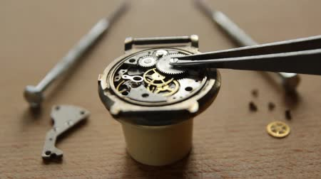 cogwheels : Mechannical watch repair