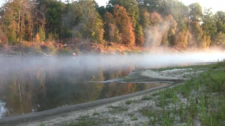 sunrise light : Morning on the river early morning reeds mist fog