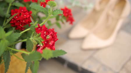 high heeled sandals : wedding shoes between red flowers