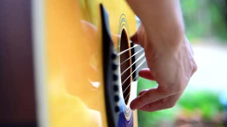 Musician playing acoustic guitar in the park Stock Footage