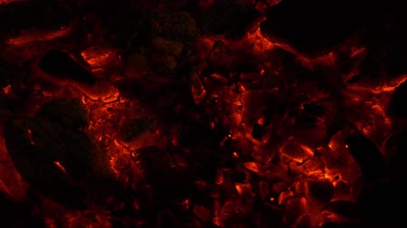кемпинг : Hot coals. Fire. background. Стоковые видеозаписи
