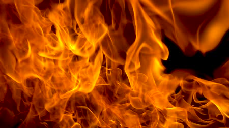 Flame and fire. Background. Slow motion Stock mozgókép