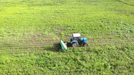 Birds-eye view. Tractor in field mows grass. Copter.