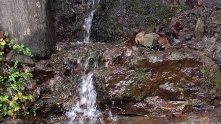 Shooting a waterfall in forest. Reserve. Park.